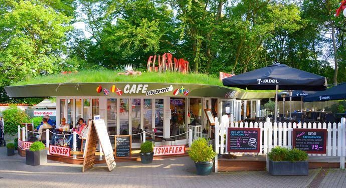 Bakken Cafe Is Fastfood Elverdybet Gruppe Voksen Facade