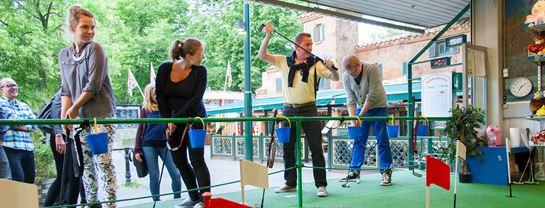 Bakken Spil Sjov Golfbanen Gruppe Voksen Aktivitet
