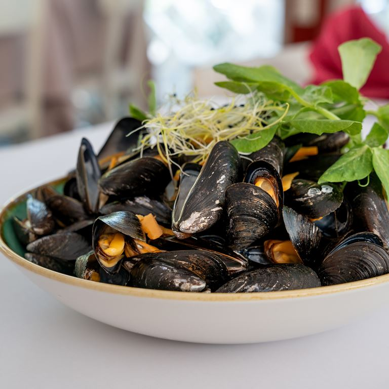 Moules Frites Roede Port Restaurant Mad Bakken