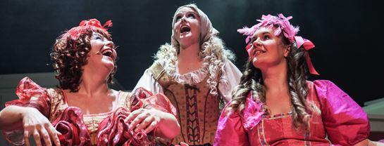Efteraar Cirkusrevyen Mastodonterne AskepotSkuespillere Teater Musical