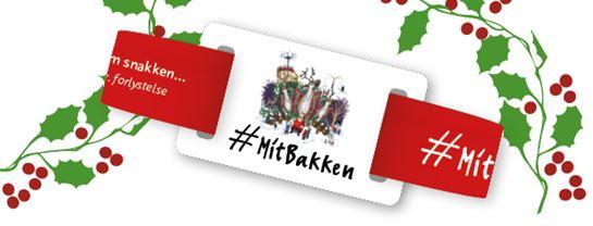 Bakken_Turbaand_Turpas_2018_Jul