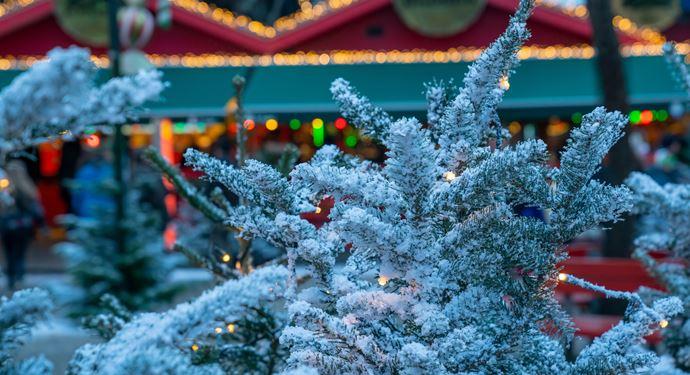 Jul Bakken Sne Juletrae