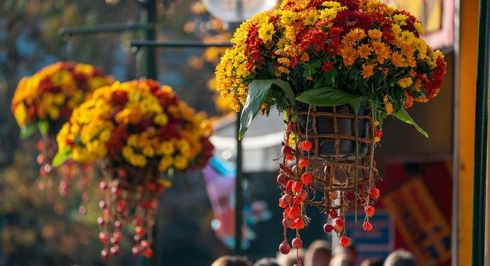 Efteraar Efteraarsferie Udsmykning Blomster Dekoration