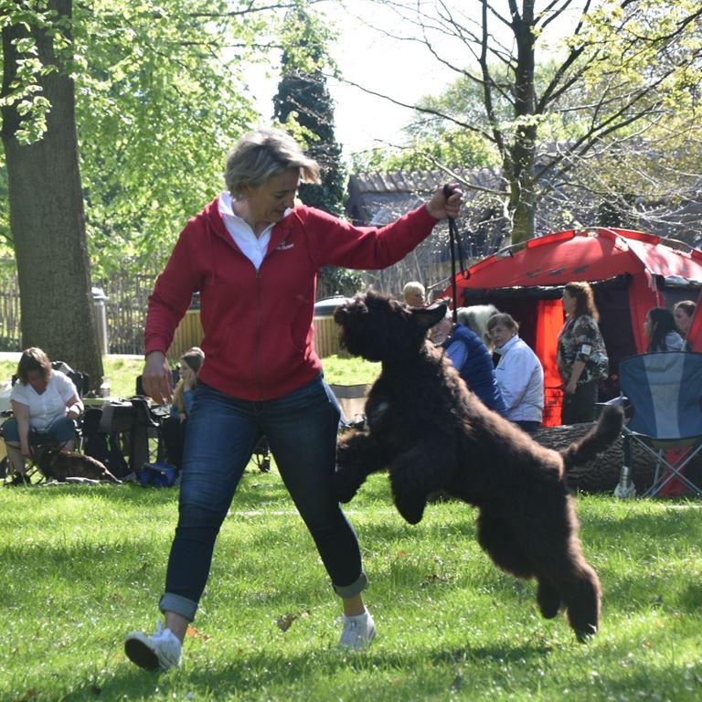 Hundeskue på Bakken - En god tradition