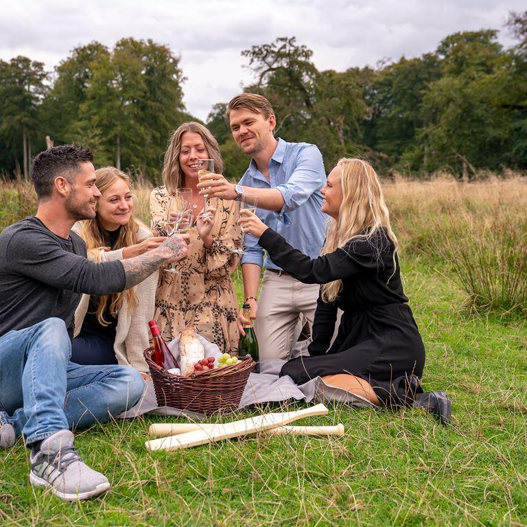 Dyrehaven_picnic_gruppe.jpg
