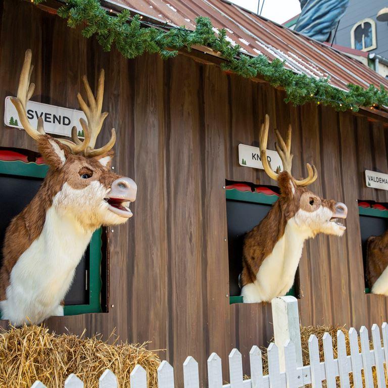 Bakken er en sjov forlystelsespark for hele familien - Åbningstider