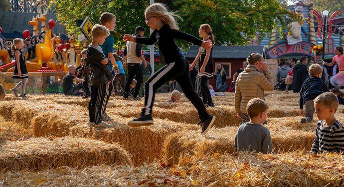 Dit sæsonkort gælder også til vores efterår- og julesæson - ekstra mange sjove dage på Bakken!